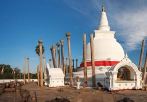 Startpakket-Sri-Lanka
